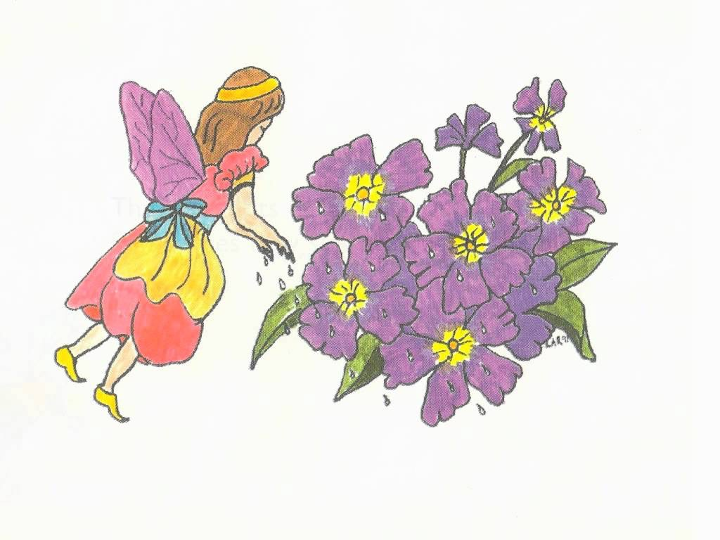Rosemary the Garden Fairy