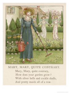 Mary, Mary, quite contrary, how does your garden grow?