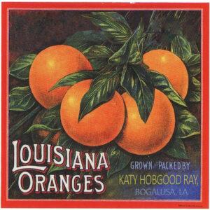 Louisiana Oranges